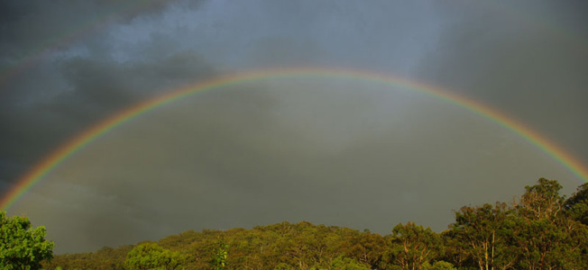 Rainbow over Anketell Forest